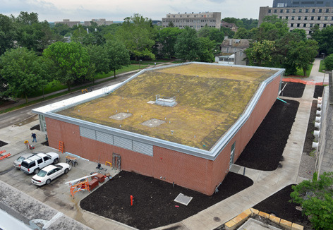 Troxel Hall green roof