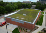 Green roof on Troxel Hall