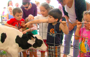 Children petting calves at the 2015 ISU Dairy Farm open house.