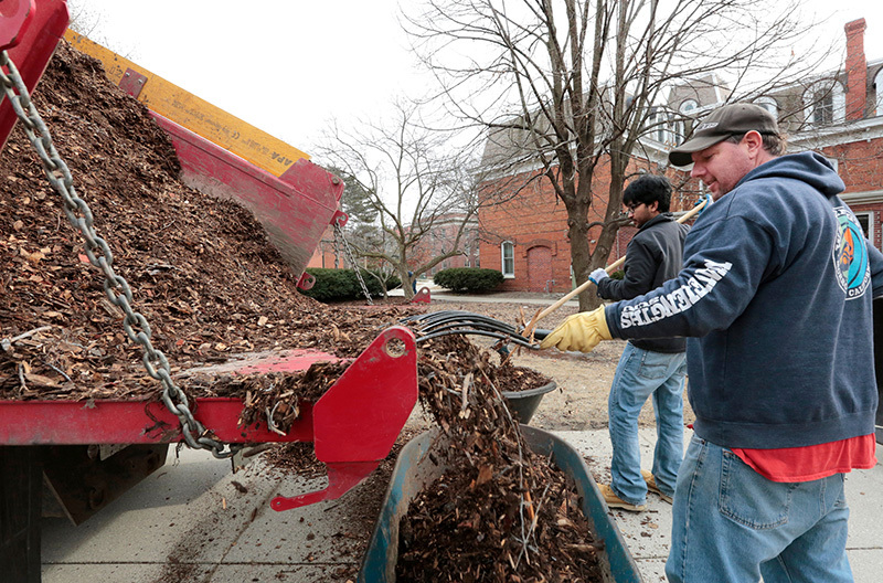Two men move mulch from a truckbed to wheelbarrows