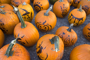 Stenciled pumpkins for carving