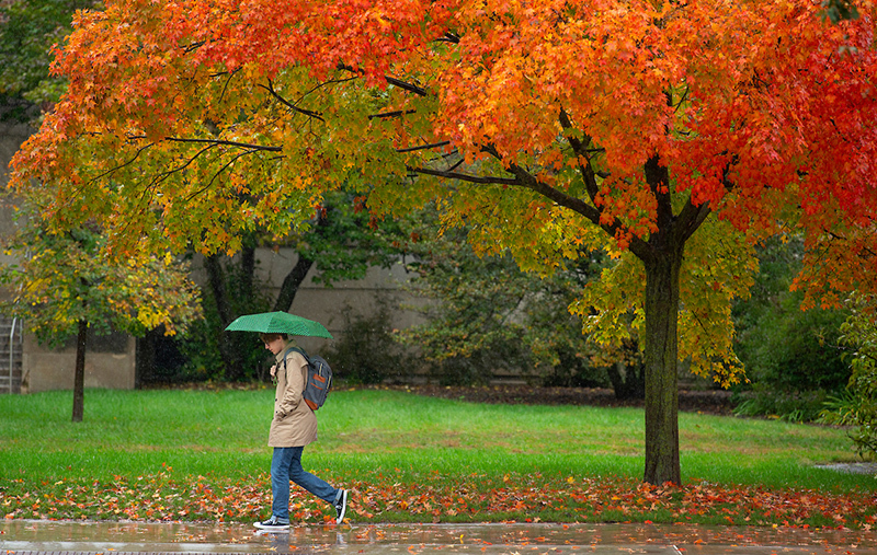 lone student under a green umbrella against orange leaves