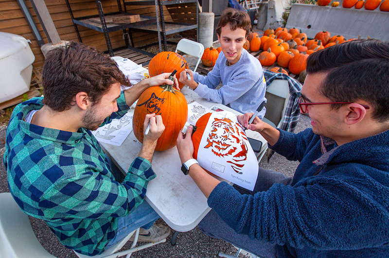 Three male students stencil pumpkins